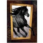 Puzzle  Art-Puzzle-4376 Black Horse