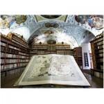 Puzzle  Art-Puzzle-4379 Bibliothek
