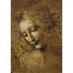Puzzle  Art-by-Bluebird-Puzzle-60117 Leonardo da Vinci - La Scapigliata, 1506-1508