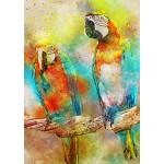 Puzzle  Bluebird-Puzzle-70032 Parrots