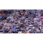 Mystery-Art-by-Bluebird-Puzzle-1000 Mystery Art Puzzle ohne Box & ohne Bild - Beutel mit 1000 Teile