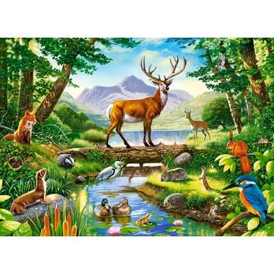 Puzzle  Castorland-030408 Woodland Harmony