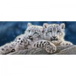 Puzzle  Castorland-060115 Snow Leopard Cubs