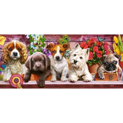 Puzzle  Castorland-060368 Puppies on a Shelf