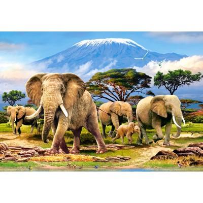 Puzzle  Castorland-103188 Kilimanjaro Morning