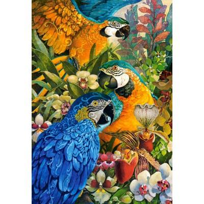 Puzzle  Castorland-103485 David Galchutt: Amazon