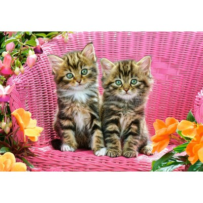 Puzzle  Castorland-103775 Kittens on Garden Chair