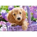 Puzzle  Castorland-103799 Puppy in Basket