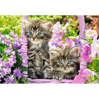 Puzzle  Castorland-104086 Kittens in Summer Garden