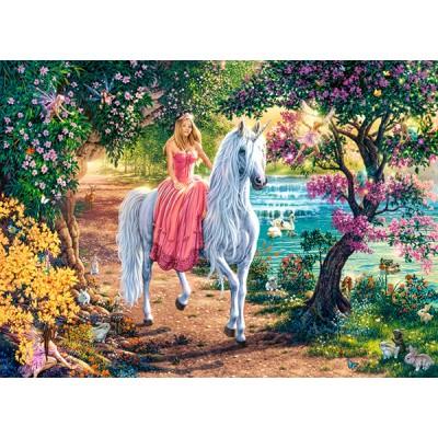 Puzzle  Castorland-111114 Secret Trail