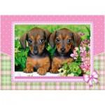 Puzzle  Castorland-13142 Dachshund Puppies