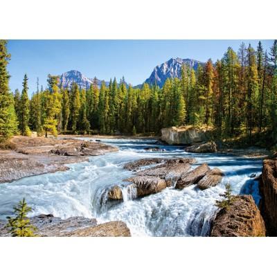 Puzzle  Castorland-150762 Fluss Athabasca, Jasper Nationalpark, Kanada