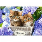 Puzzle  Castorland-151561 Kätzchen zwischen Blumen
