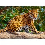 Puzzle  Castorland-27392 Little Jaguar