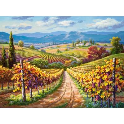 Puzzle Castorland-300587 Vineyard hill