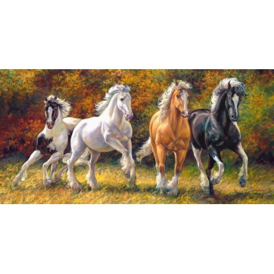 Puzzle  Castorland-400119 Born to Run
