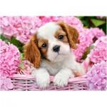Puzzle  Castorland-52233 Welpe zwischen pinken Blumen