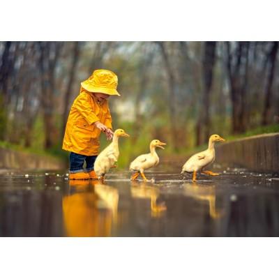 Puzzle  Castorland-52264 Rainy Day Friends