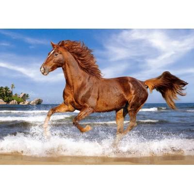 Puzzle Castorland-52578 Pferd am Strand