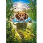 Puzzle  Castorland-52882 Swimming Dog