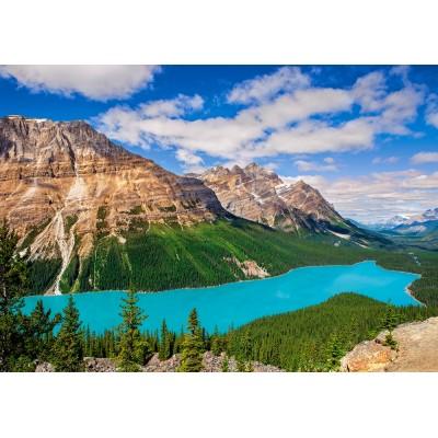 Puzzle  Castorland-53056 Peyto Lake, Canada