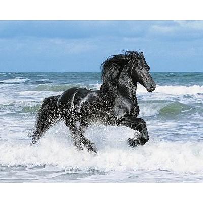 Puzzle  Clementoni-30175 Pferd am Meer