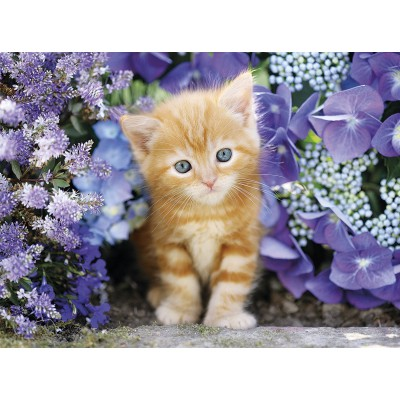 Puzzle  Clementoni-30415 Katze Im Blumenmeer