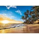 Puzzle  Clementoni-31681 Tropischer Sonnenaufgang