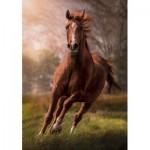 Puzzle  Clementoni-31811 Pferd