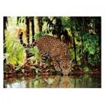 Puzzle  Clementoni-32537 Leopard
