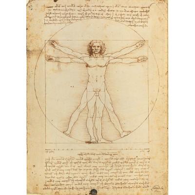 Puzzle  Clementoni-35001 Leonardo da Vinci: Der vitruvianische Mensch