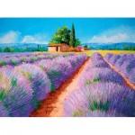 Puzzle  Clementoni-35073 Lavendel Feld