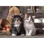 Puzzle  Clementoni-39340 Kätzchen