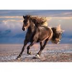 Puzzle  Clementoni-39420 Pferd in Freiheit