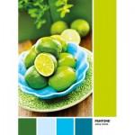 Puzzle  Clementoni-39492 Pantone - Limonenschale