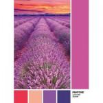Puzzle  Clementoni-39493 Pantone - Purple