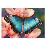 Puzzle  Dino-50249 Butterfly