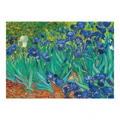 Puzzle  Dino-53216 Vincent Van Gogh - Schwertlilien