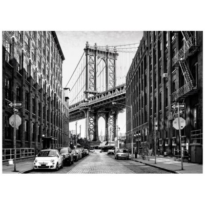 Puzzle  Dino-53253 Street of Manhattan