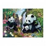 Dino-53263 Secret Puzzle - Pandas