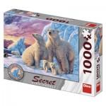 Dino-53278 Secret Puzzle - Eisbären