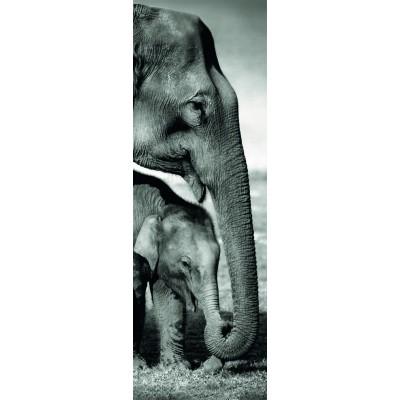 Puzzle Dino-54536 Elefanten