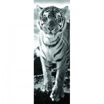 Puzzle  Dino-54543 Tiger