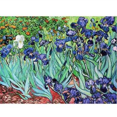 Puzzle  DToys-66916-VG03 Van Gogh: Iris