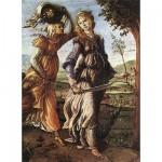 Puzzle  DToys-66954-RN03 Botticelli: Judith