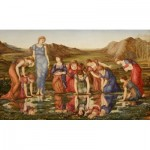 Puzzle  Dtoys-72733 Edward Burne-Jones: The Mirror of Venus, 1875