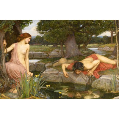 Puzzle  Dtoys-75048 Waterhouse John William: Echo und Narcissus