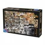 Puzzle  Dtoys-75260 Collage - Katzen