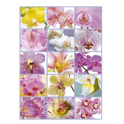 Puzzle Educa-16302 Blumen Collage