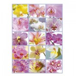 Puzzle  Educa-16302 Blumen Collage